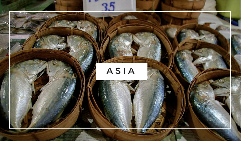 Destination-Asia-Fish-in-Thailand