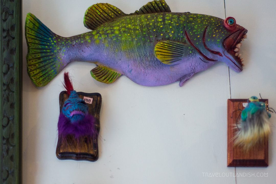 Fish on the wall at the Peculiarium