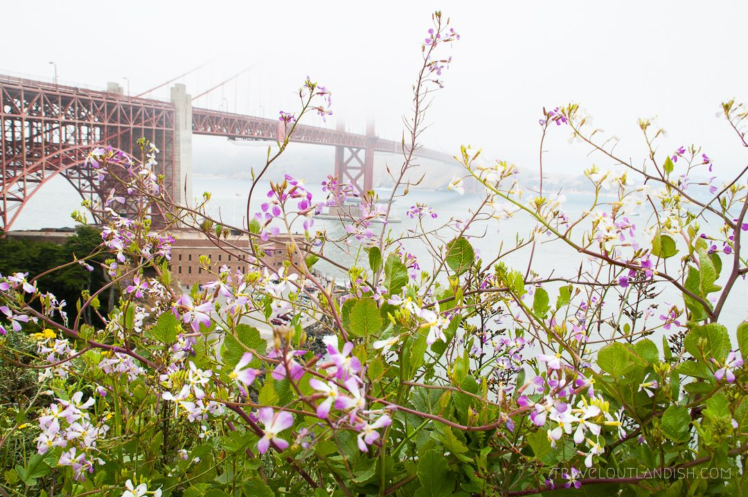 Unique Things to do in San Francisco: Bike the Golden Gate Bridge
