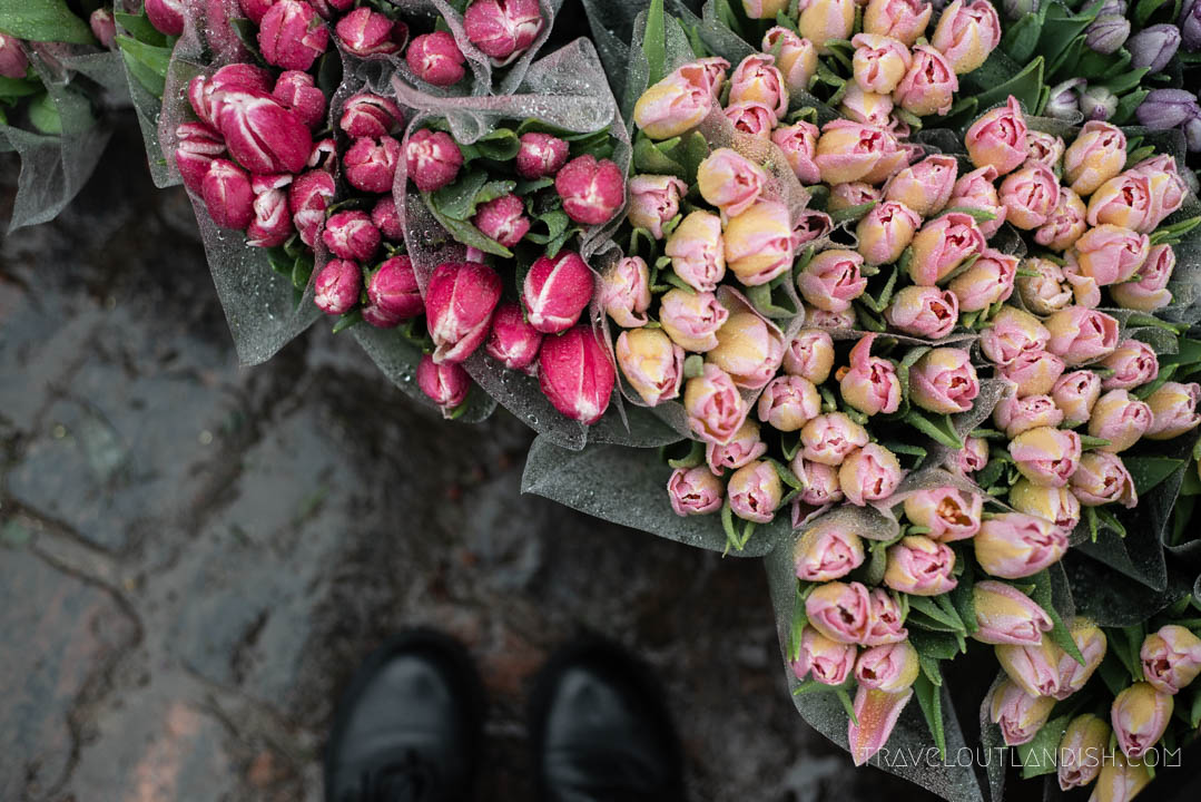 Fun Things to do in Copenhagen - Flower Shopping in Værnedamsvej