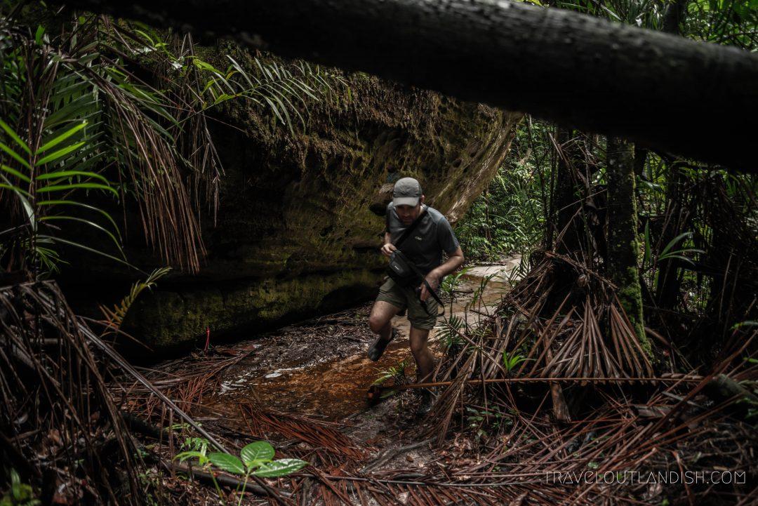 Bako National Park - Hiking Trails