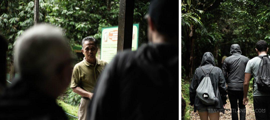 Semenggoh Wildlife Centre - Briefing