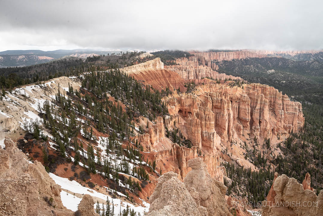 Looking Out Over the Hoodoos in Bryce Canyon