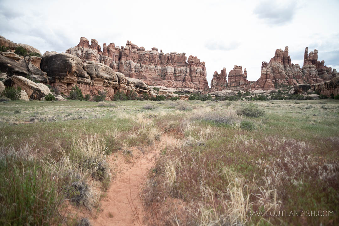 Devils Pocket Campground at Canyonlands National Park