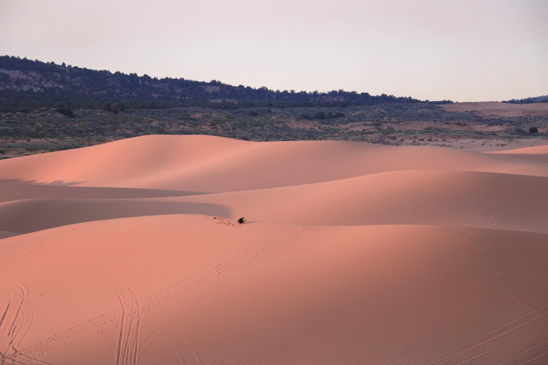 Best State Parks in Utah - Coral Pink Sand Dunes State Park