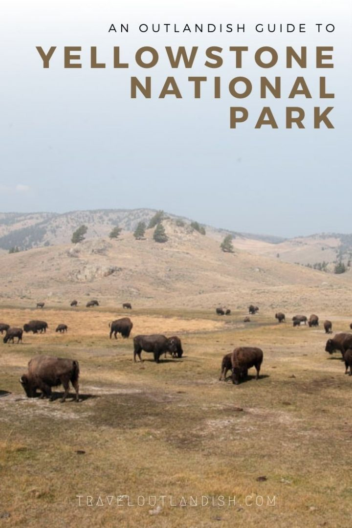 Ready to experience Yellowstone National Park? There's more to it than Old Faithful. Geothermal features, alternative geysers, and where to see wildlife. Here's a complete guide incl. hiking trails, best campsites, and things to do in Yellowstone National Park.