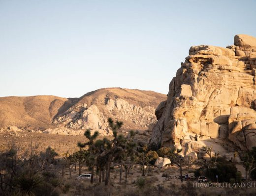 Joshua Tree National Park - Things to do in Joshua Tree