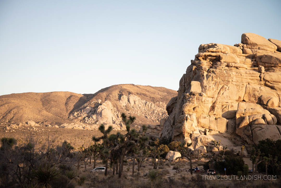 Joshua Tree National Park - Things to do in Joshua Tree